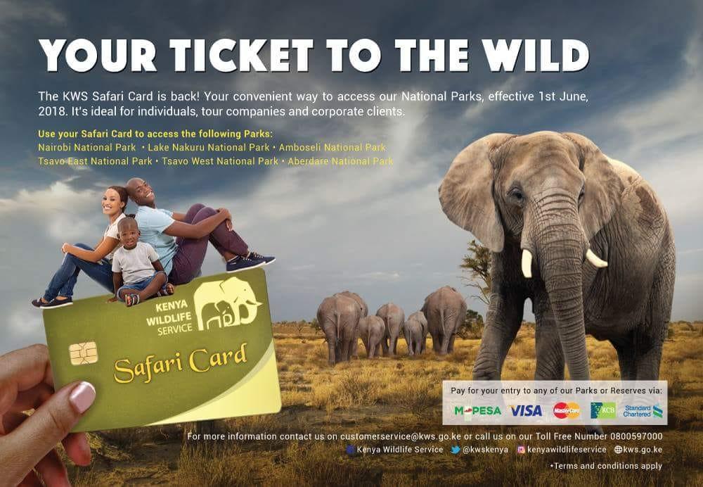 Kenya Wildlife Service Safari Card