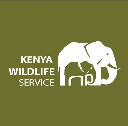Extension of Reduced Park Fees Tariff by Kenya Wildlife Service