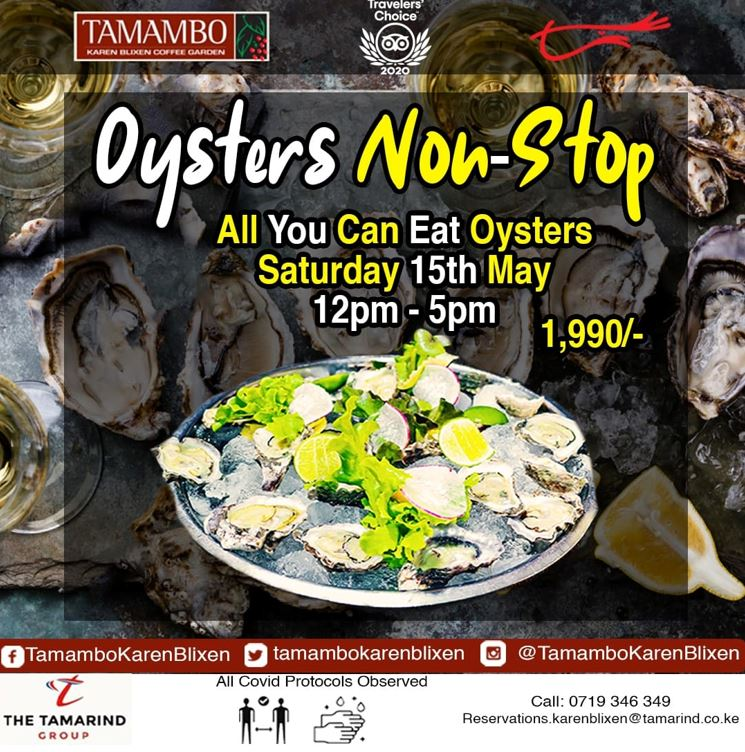 Tamambo Oysters Non Stop This Saturday