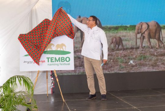 Elephant Naming Festival Launched