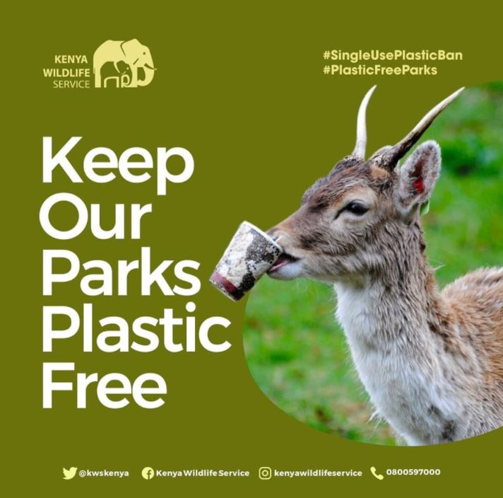 Kenya Bans Single-Use Plastics in All Protected Areas - Since 5th of June 2021