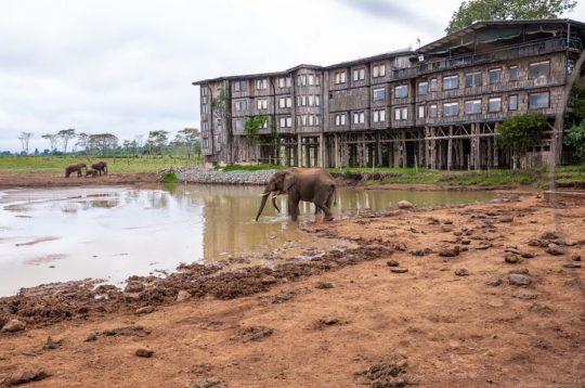 The WRC safari rally's return a good opportunity to profile Kenya