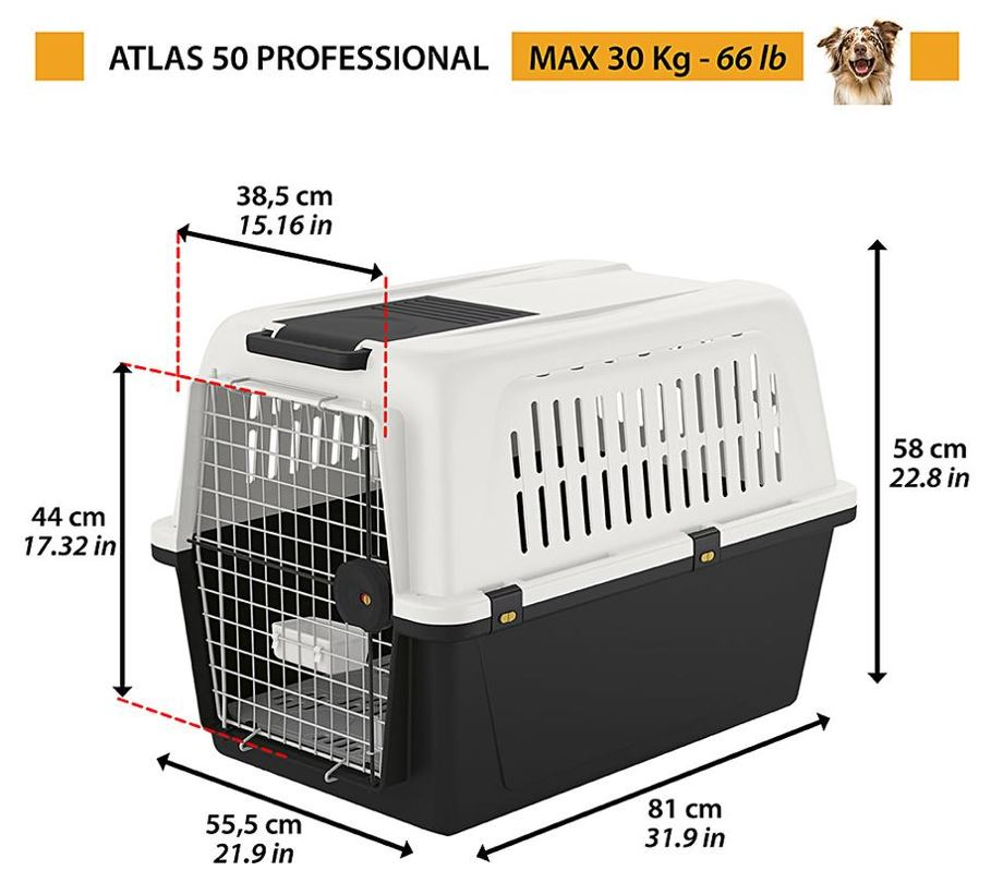 Carriers To Transport Your Pets