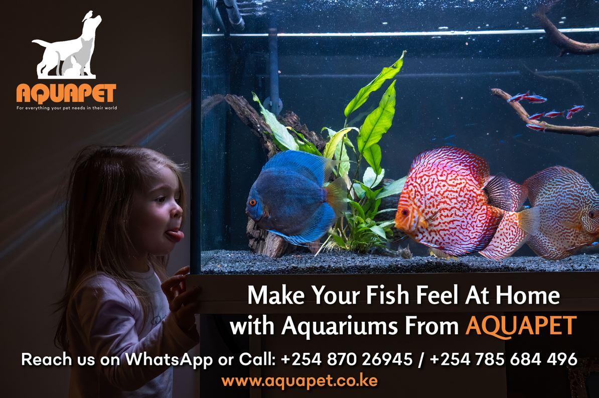 Aquapet Aquarium Main