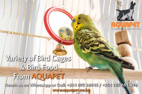 Bird Cages and Bird Food