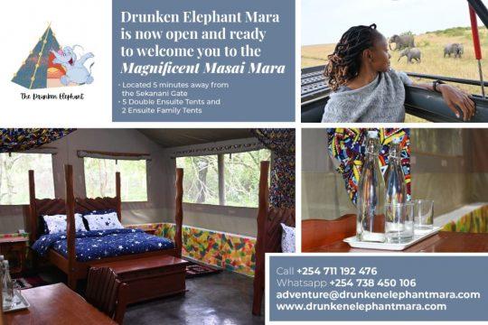 Drunken Elephant Mara Camp Opens on 1st July 2021