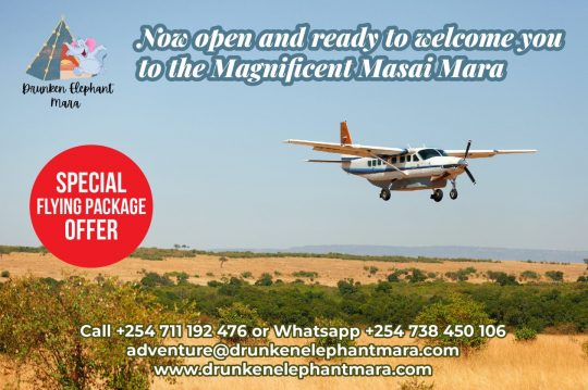 Masai Mara Flying Packages