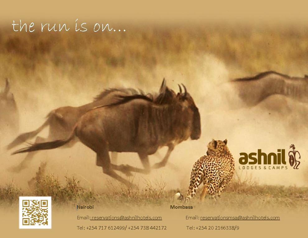 Maasai Mara Wildebeest Migration with Ashnil Lodges & Camps