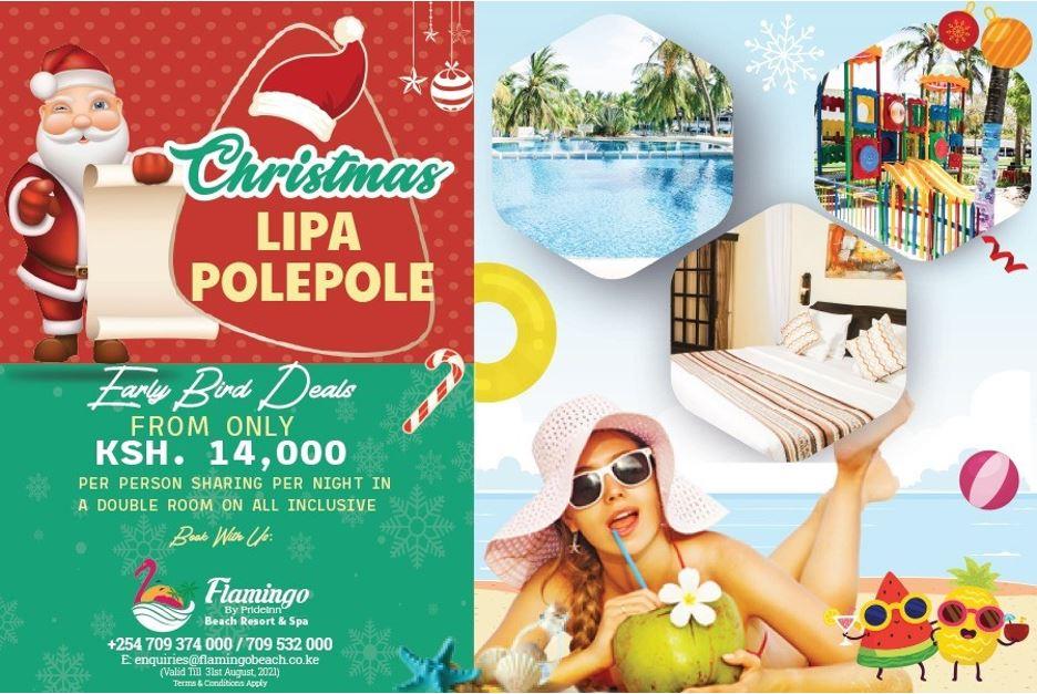 Early Bird Christmas Deal By Prideinn Flamingo - Lipa Polepole