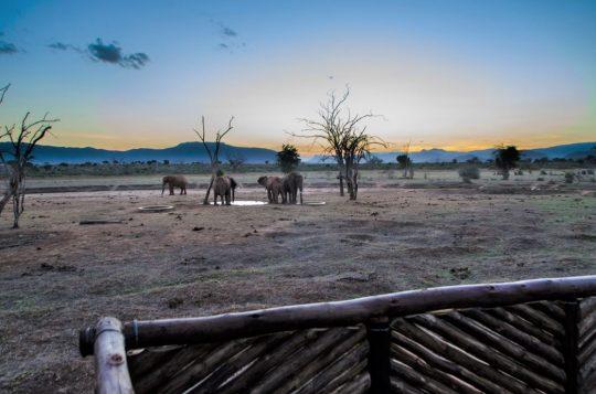 Sentrim Tsavo Camp Safari Special Offers