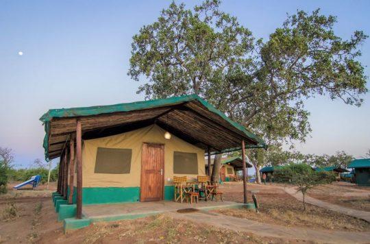 Sentrim Safari Offers - Tsavo and Amboseli